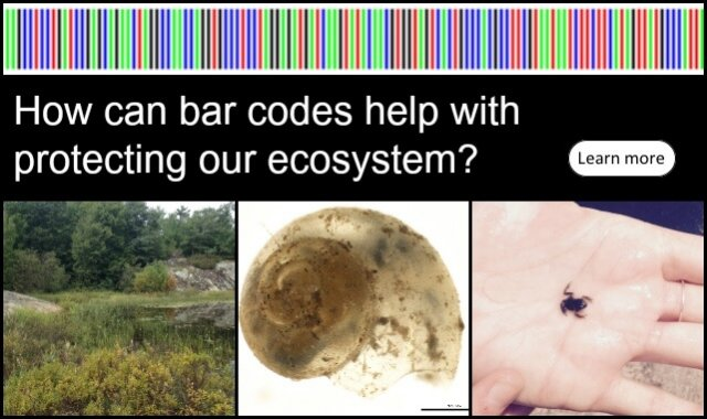 dna-barcoding-front-web-pic-georgian Bay