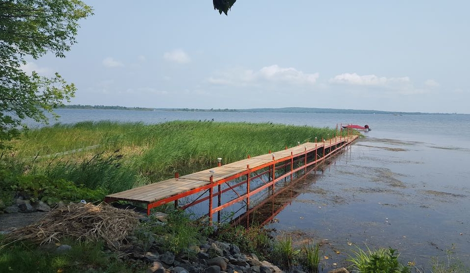 Dock and Phragmites in Georgian Bay