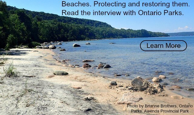 Front Page beaches lower res