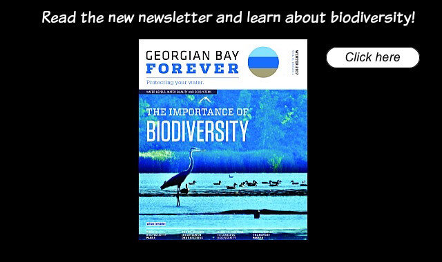 Biodiversity front page image