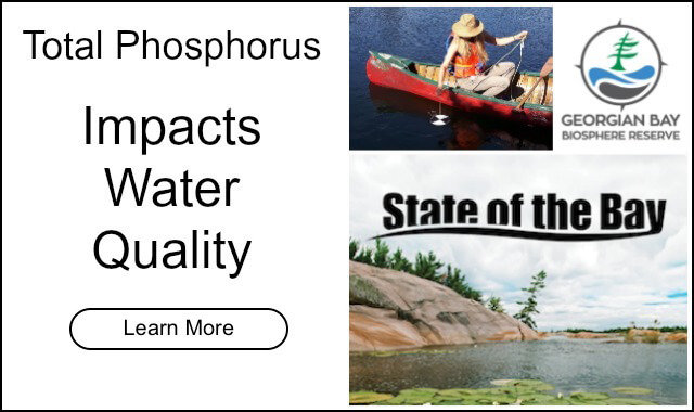 Front Banner image total phosphorus state of the bay