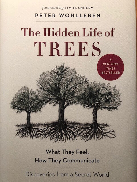 Picture of book: The Hidden Life of Trees:  What They Feel, How They Communicate – Discoveries from a Secret World