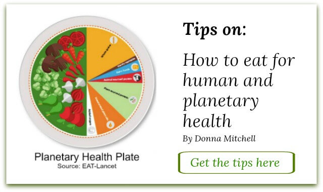 Tips image on How to eact for Human and Planetary Health_D.Mitchell