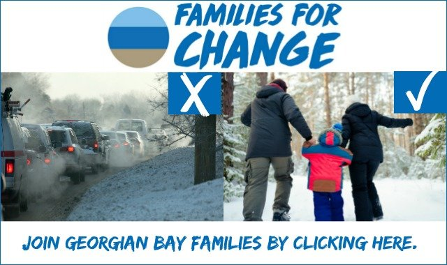 Website front image for Families For Change Winter