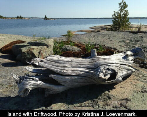 Isalnd with Driftwood Kristina