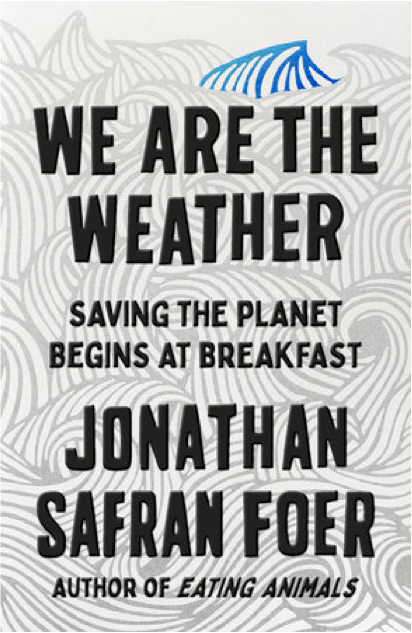 Picture of book: We Are The Weather