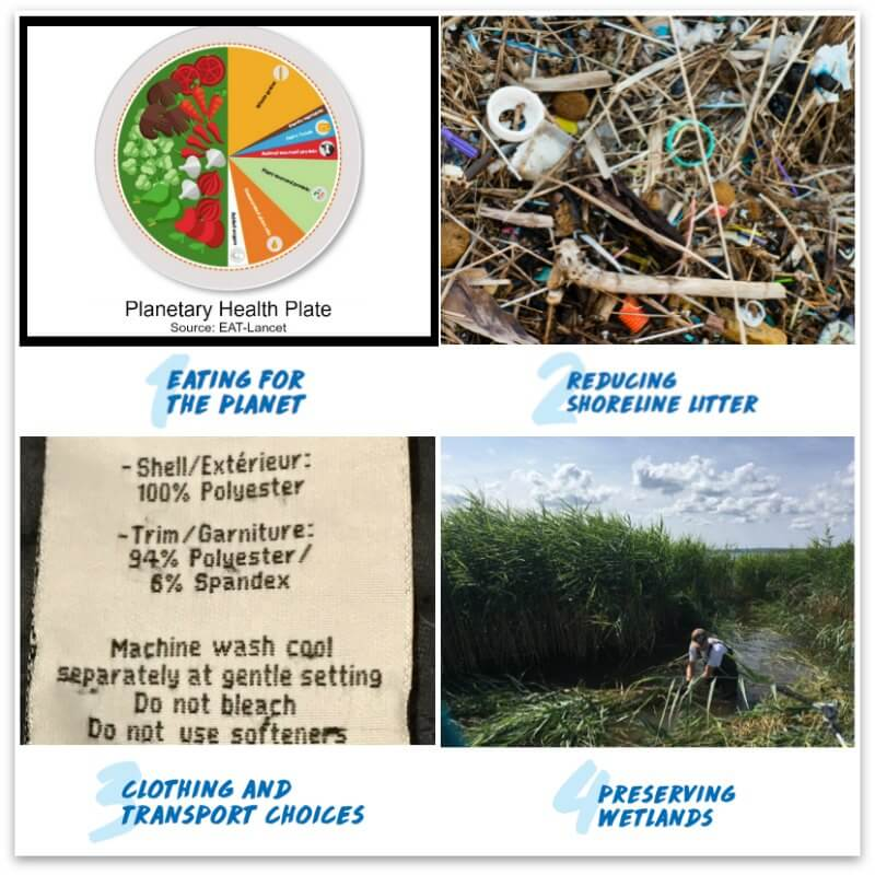 picture of 4 categories for Families For Change SUmmer