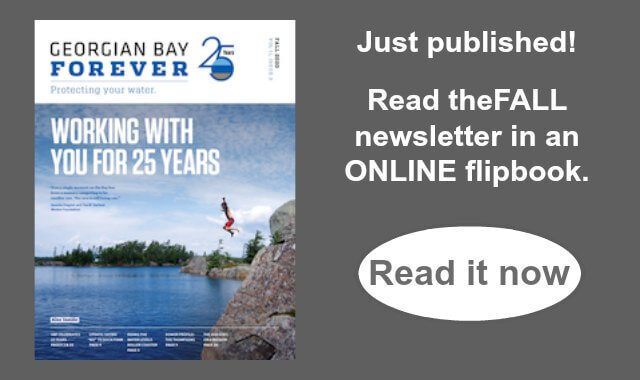 Fall 2020 ONline newsletter_home page