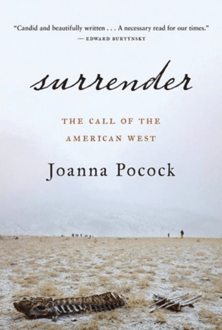 Picture of book:Surrender: the Call of the American West