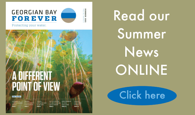 Home Page Georgian Bay Forever Newsletter