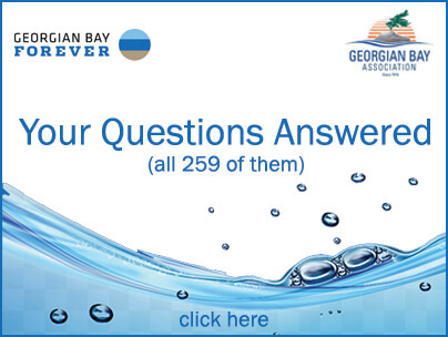 Link to list of 259 questions